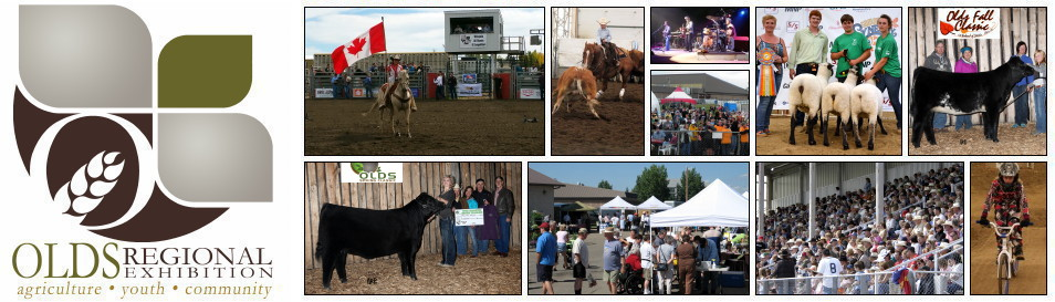 For over 100 years, Olds Agricultural Society has been one of those organizations that town and country folk both participate in. And now it has evolved into the Olds Regional Exhibition.